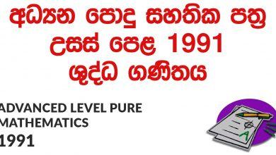Advanced Level Pure Mathematics 1991 Paper