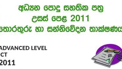 Advanced Level ICT 2011 Paper