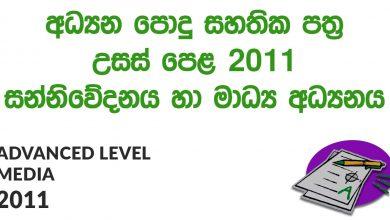 Advanced Level Media 2011 Paper