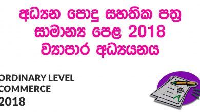 Ordinary Level Commerce 2018 Paper