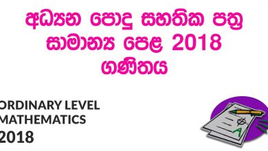 Ordinary Level Mathematics 2018 Paper