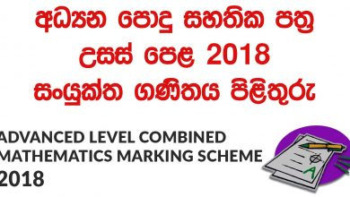 Advanced Level Combined Mathematics 2018 Marking Scheme